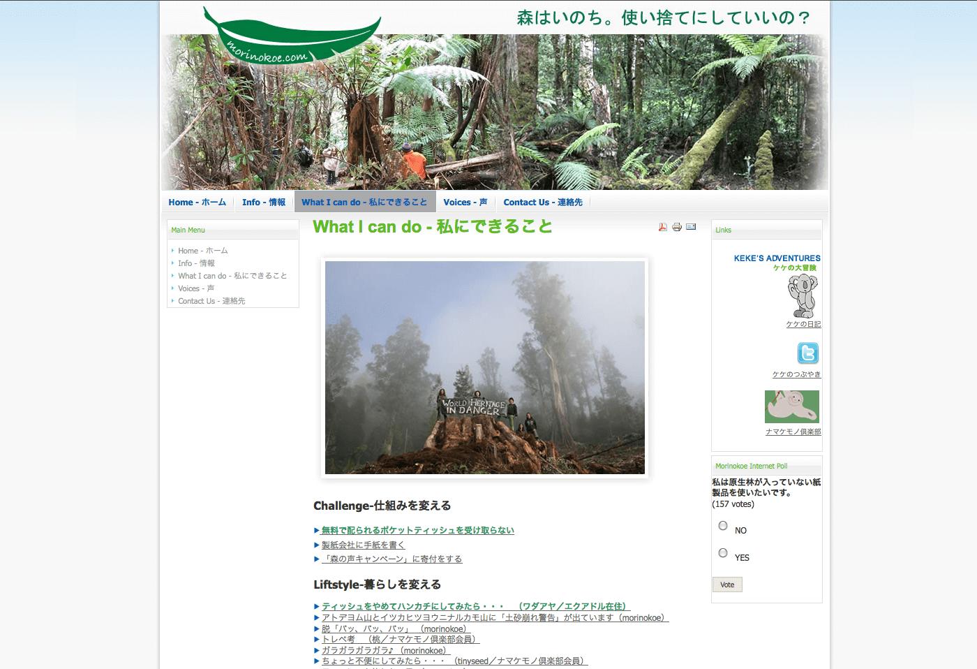 Able Video Morinokoe Website 02