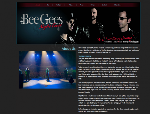 The Bees Gees – Night Fever