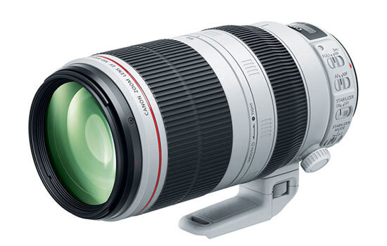 Able Video Canon 100-400mm Lens Equipment Hire Gold Coast